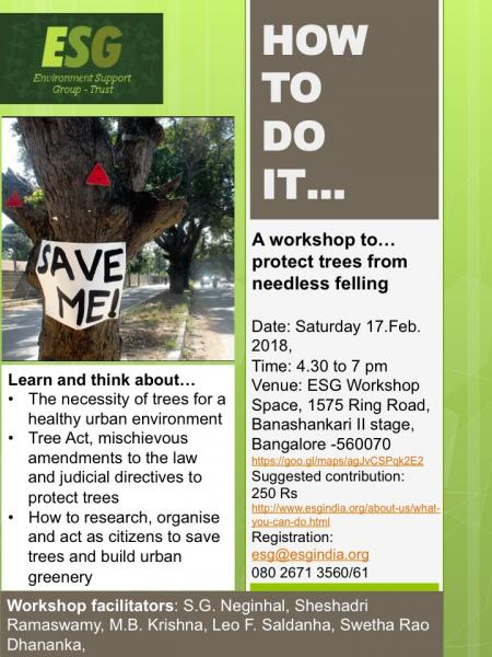 How to Save Trees Workshop