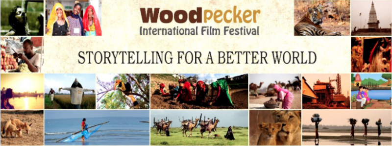 Woodpecker Film Festival